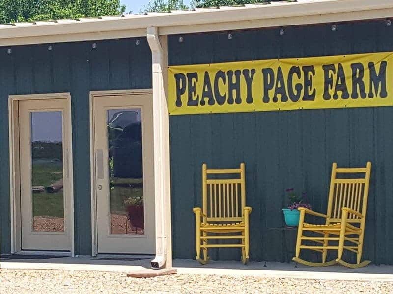 Peachy Page Storefront