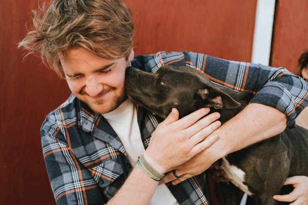 Use essential oils to keep your pets healthy.  Showing Man getting licked by his dog.